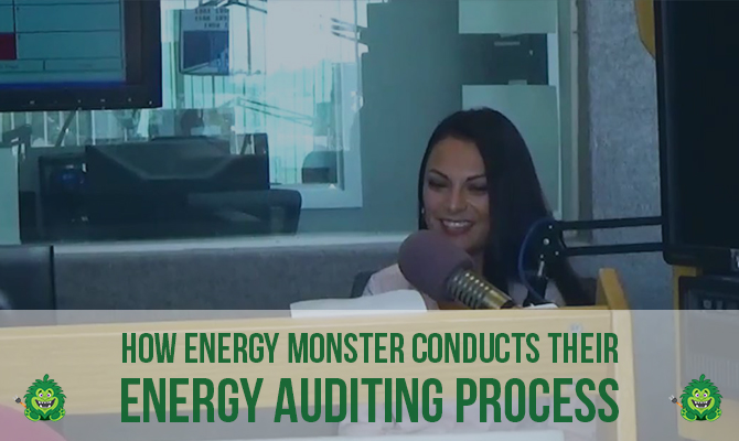 energy auditing process