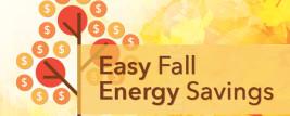 EM-Fall
